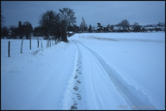 2004_Menoux42.jpg