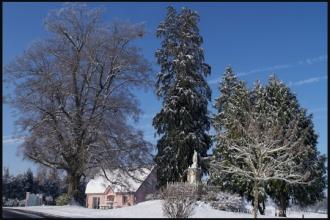 2010-11_neige_Menoux_1.jpg