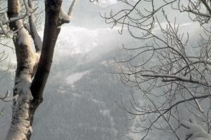 1963_Chamonix-43