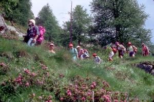 mont-1990_grandParadis752