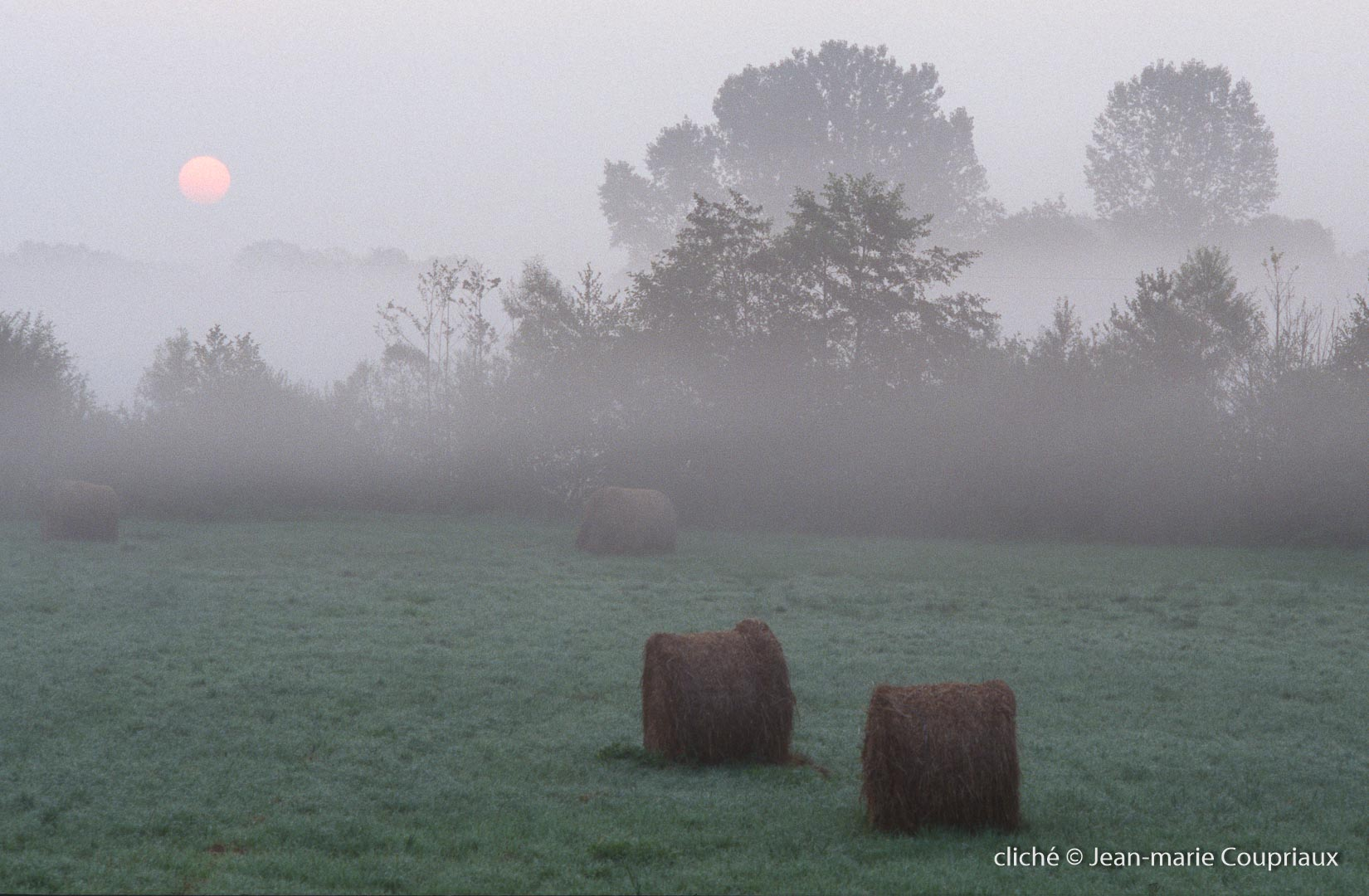 058_Nature-Menoux-47
