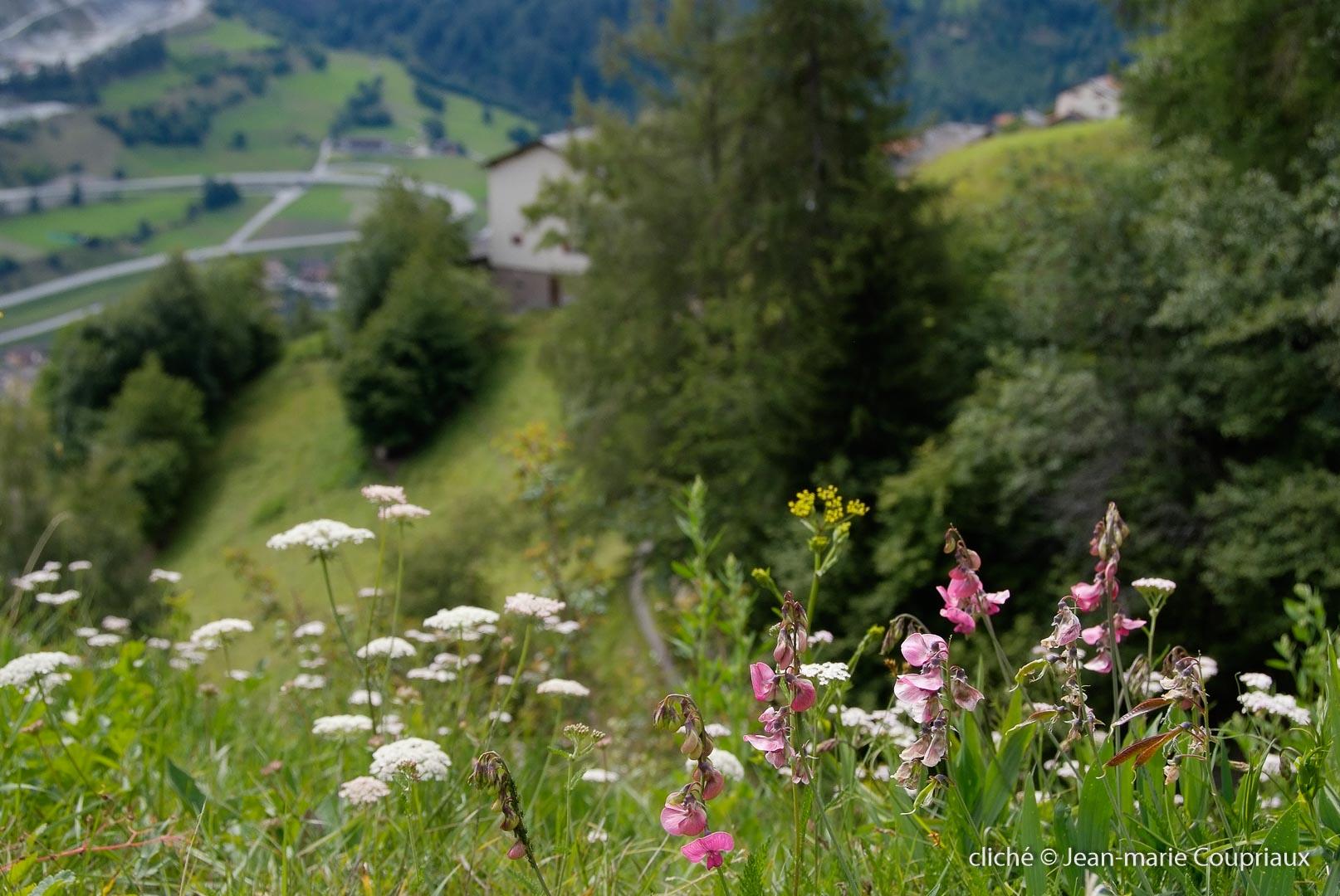 2011-09_chezLesReuzes_25