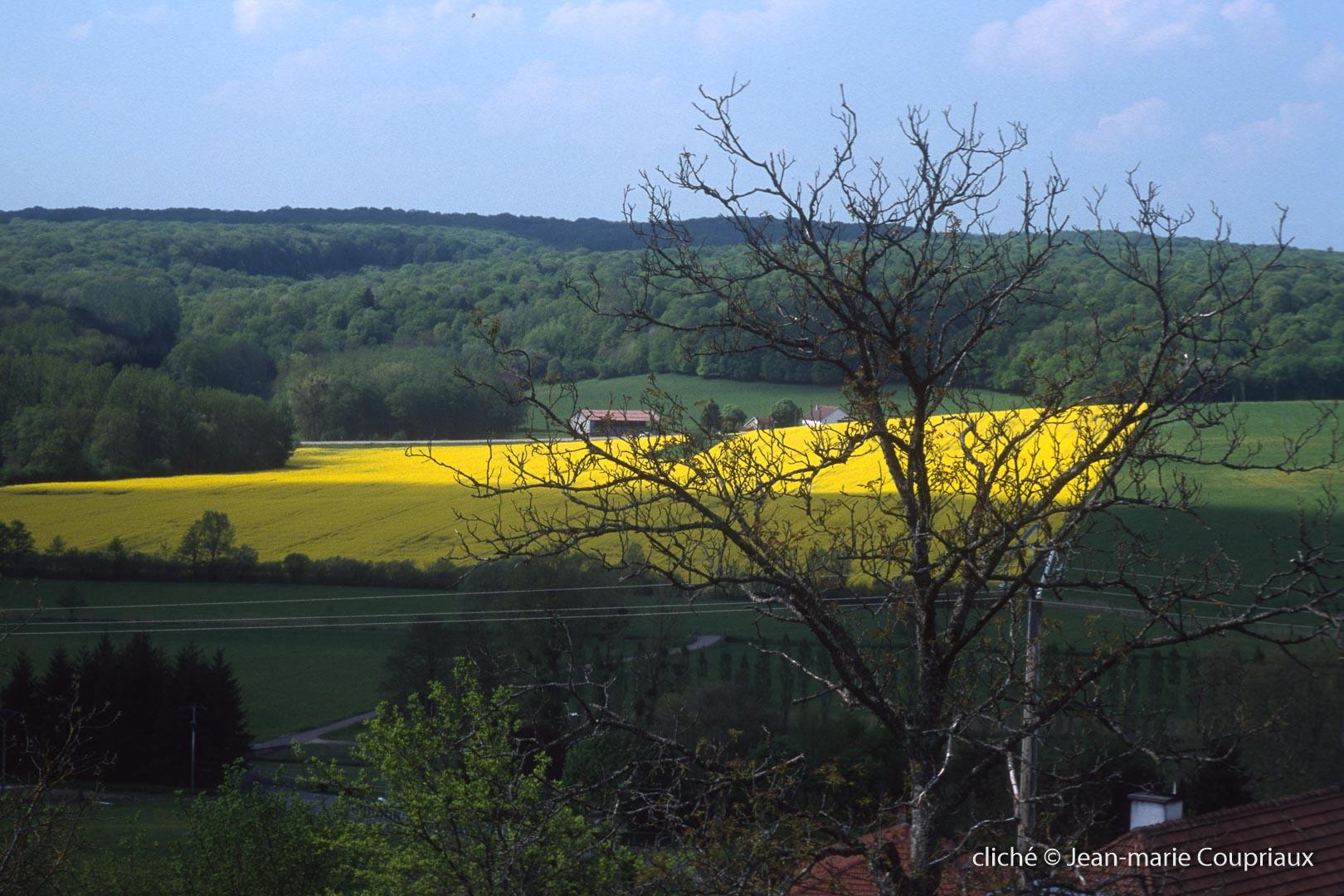 Agri-paysage-6
