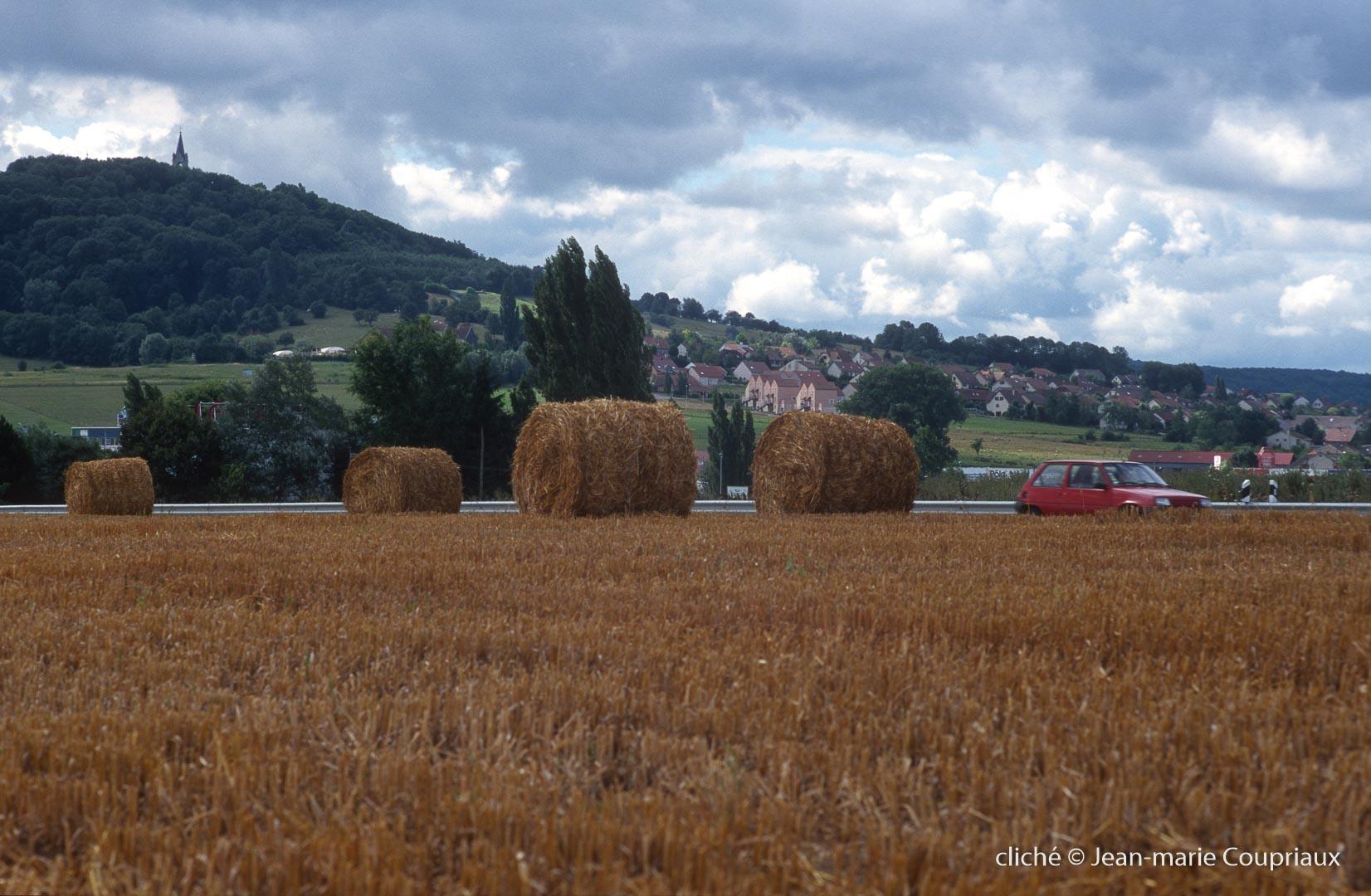 Agri_cultures-275-1