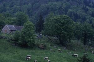 Agri-paysage-1