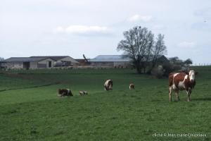 Agri-paysage-2