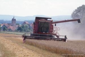 Agri_cultures-244