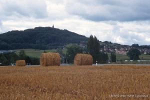 Agri_cultures-275-2