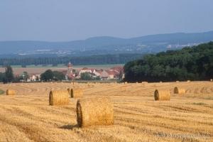 Agri_cultures-298-2