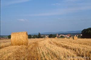 Agri_cultures-298-3