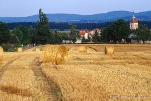 Agri_cultures-301