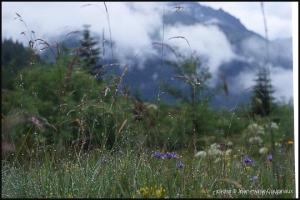 Mt-Blanc_12