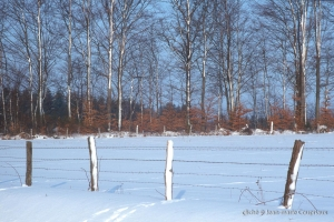 hiver-10