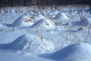 hiver-125