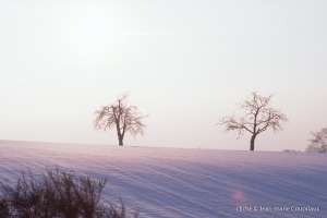 hiver-135