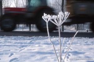 hiver-25