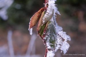 hiver-27
