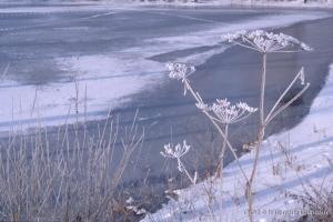 hiver-35