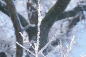 hiver-38