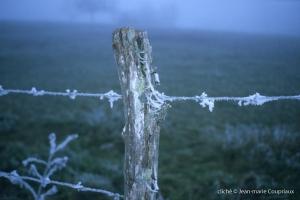 hiver-47