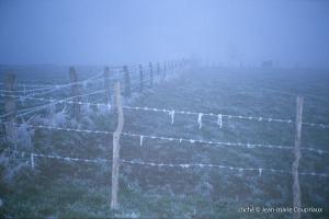hiver-49
