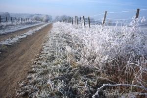 hiver-54