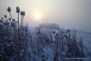 hiver-62