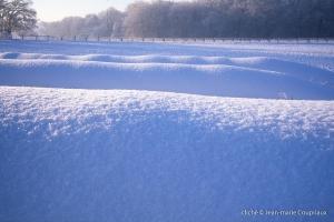 hiver-81