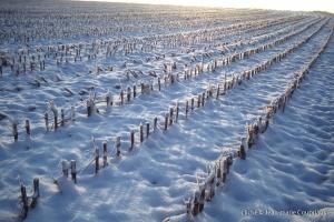 hiver-90