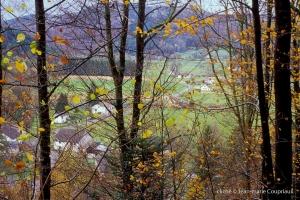 nature-automne-1