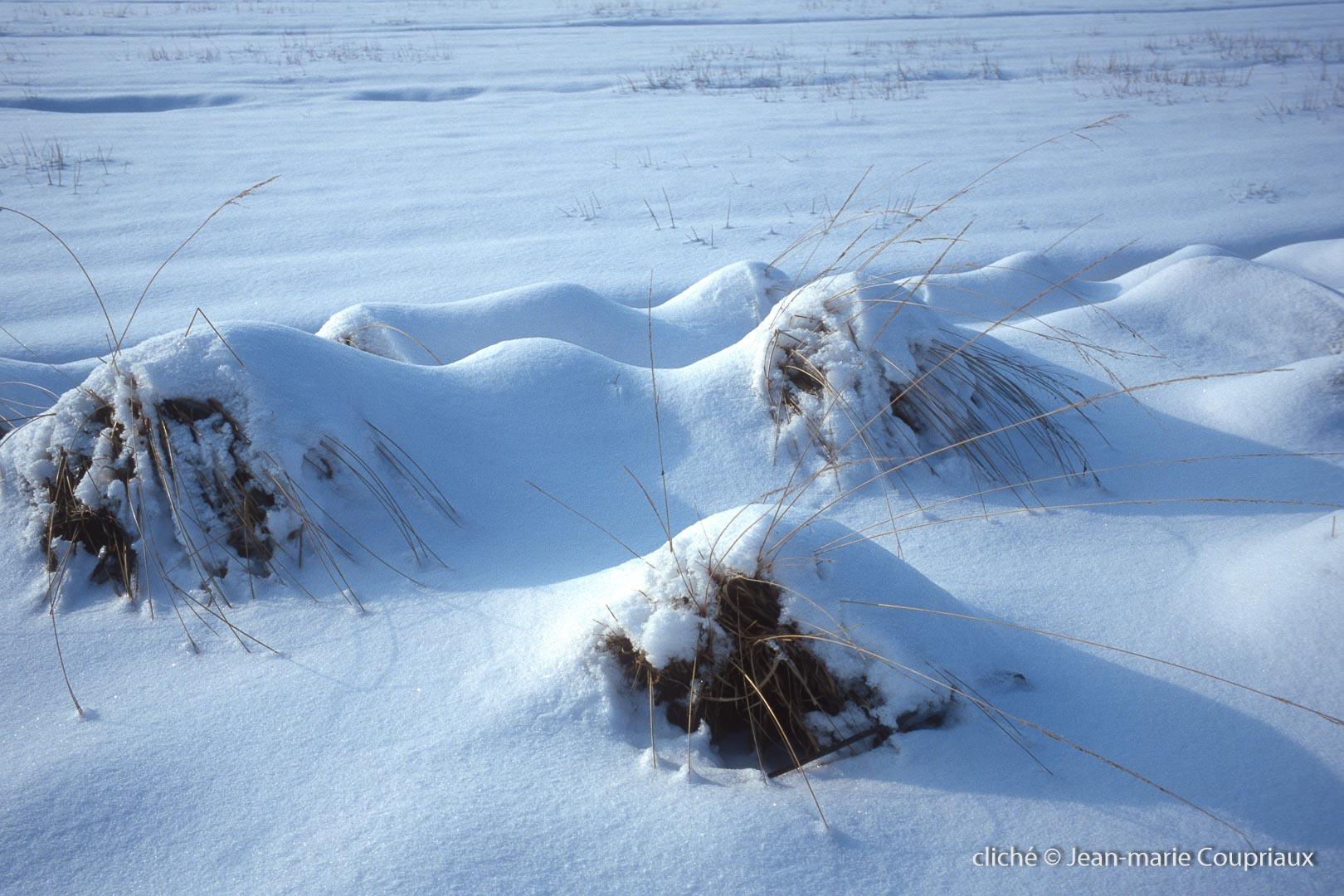 hiver-130