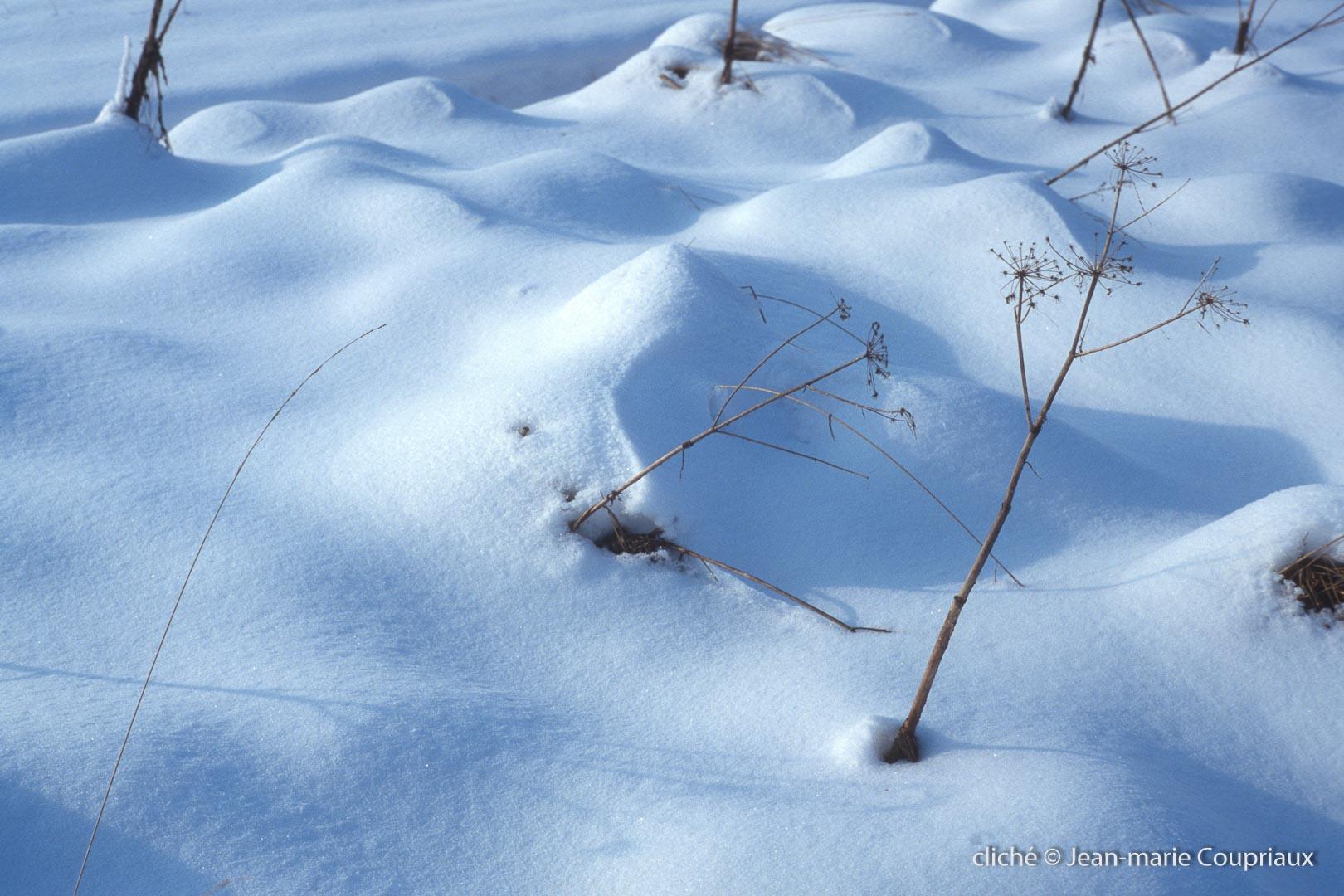 hiver-131