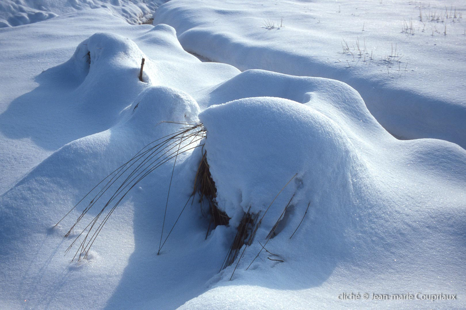 hiver-133