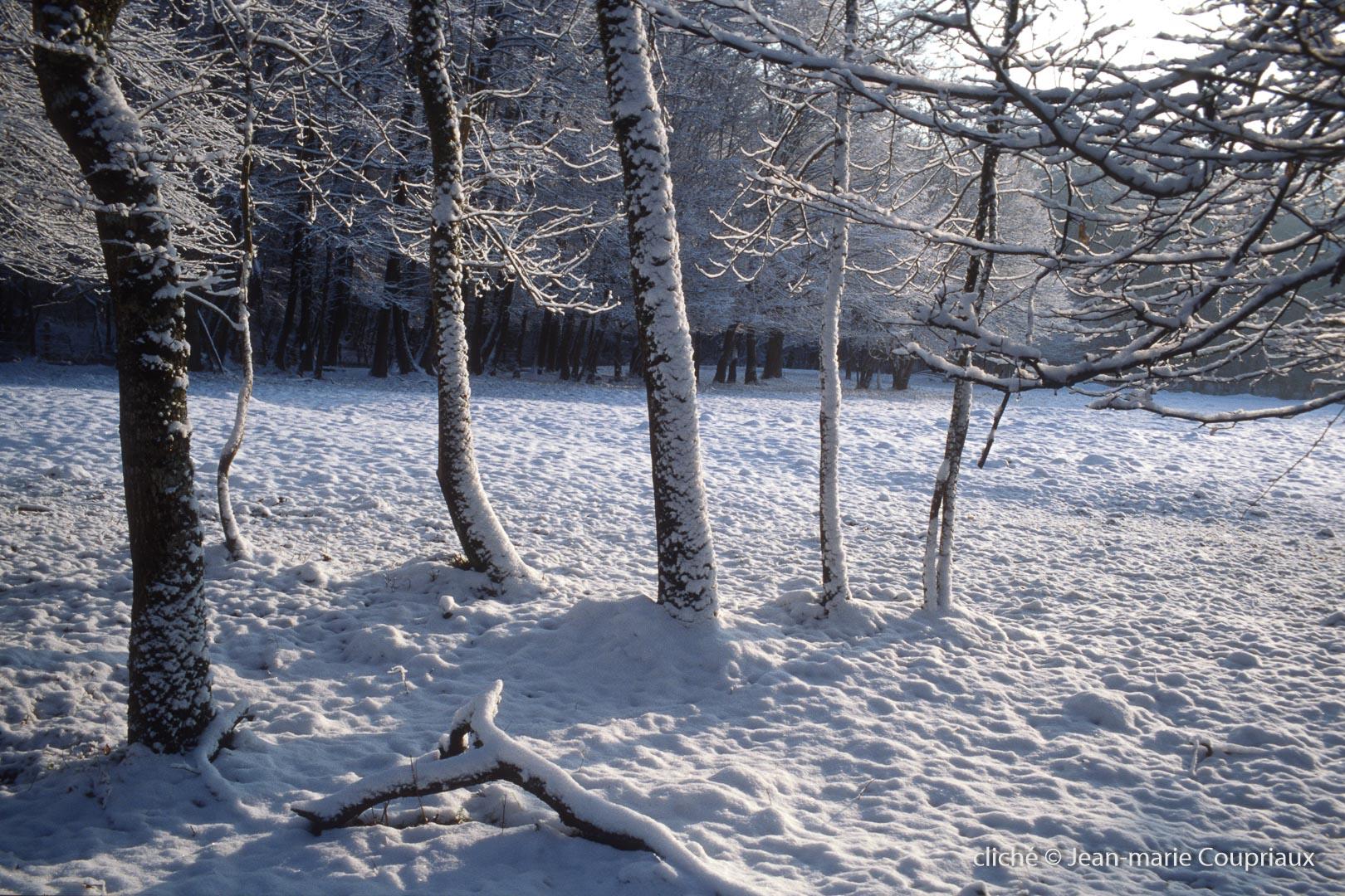 hiver-14