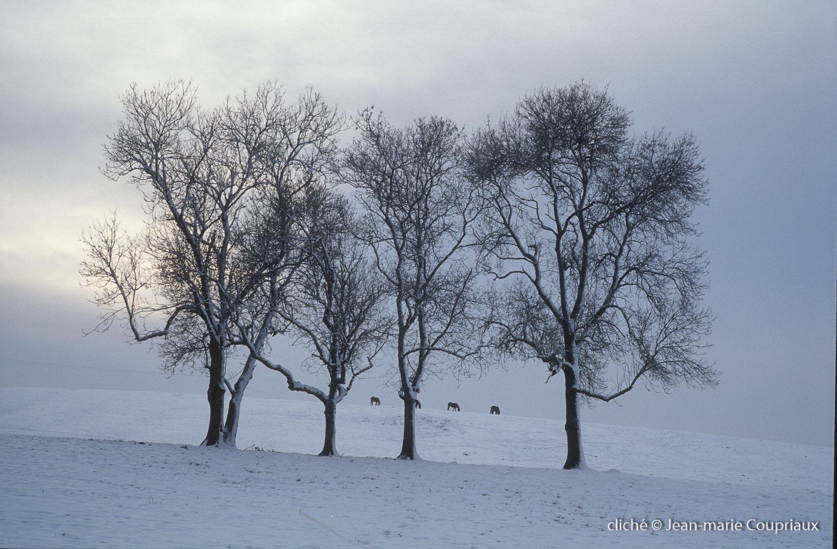 hiver-2