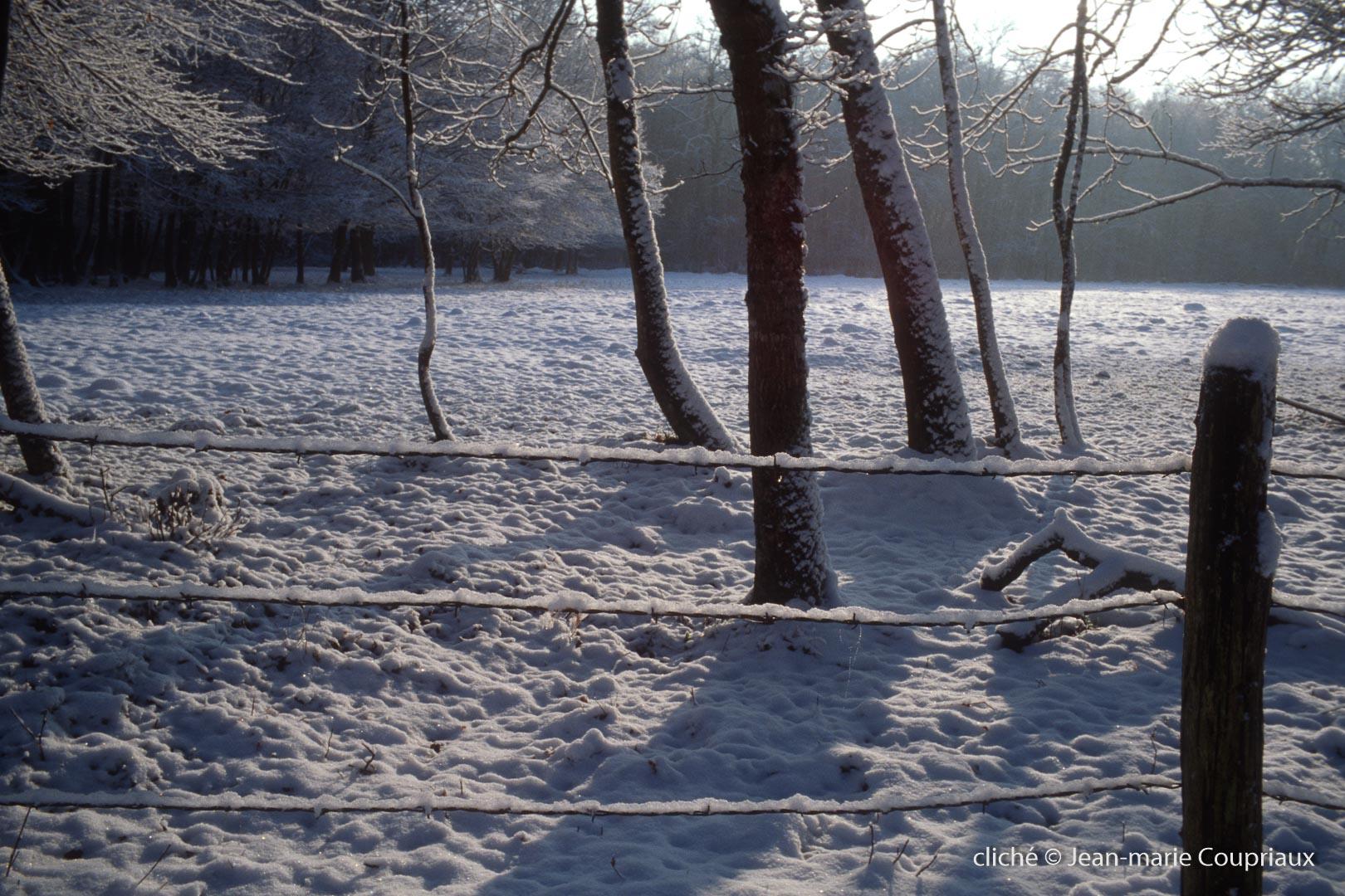 hiver-22