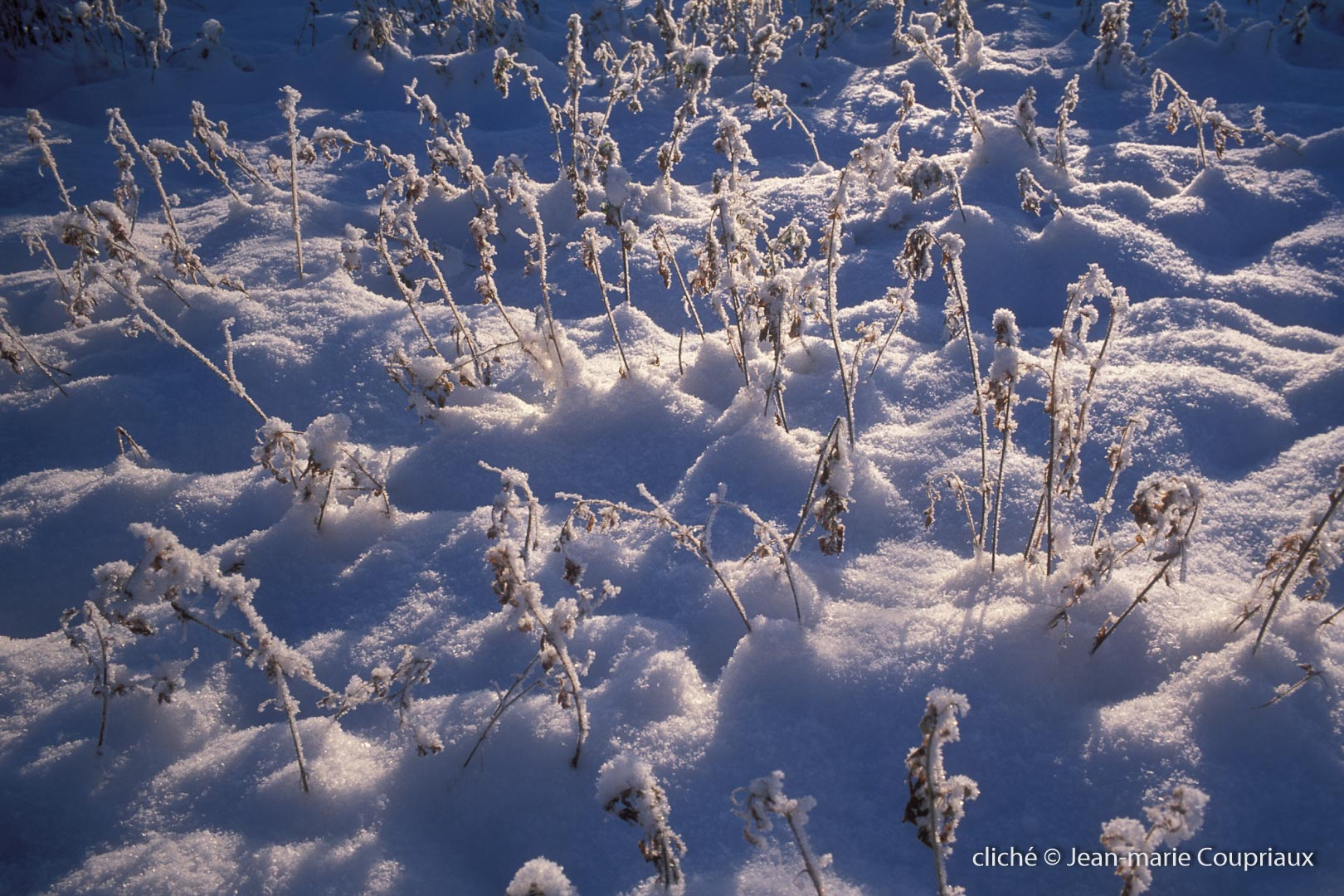 hiver-24