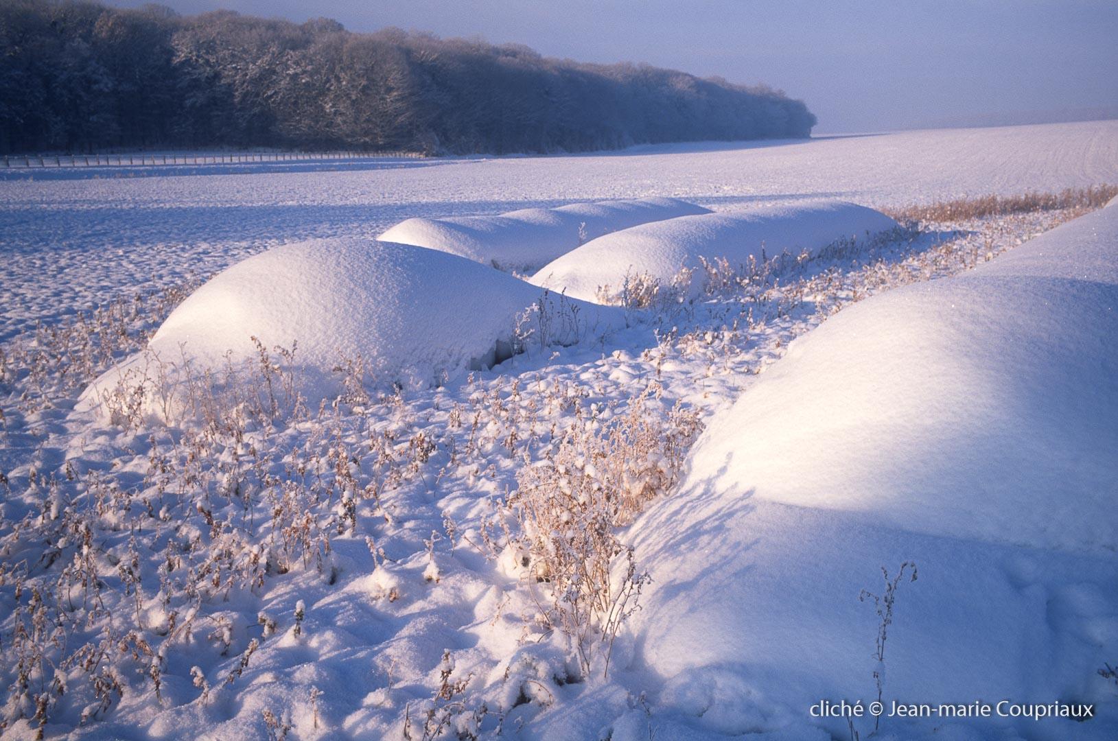 hiver-83