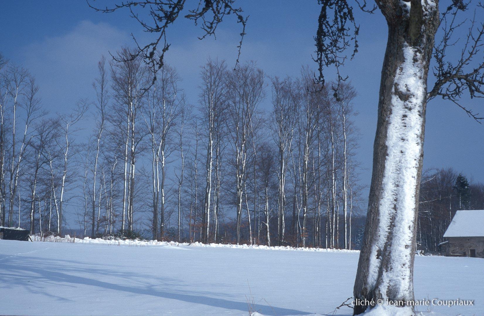 hiver-9