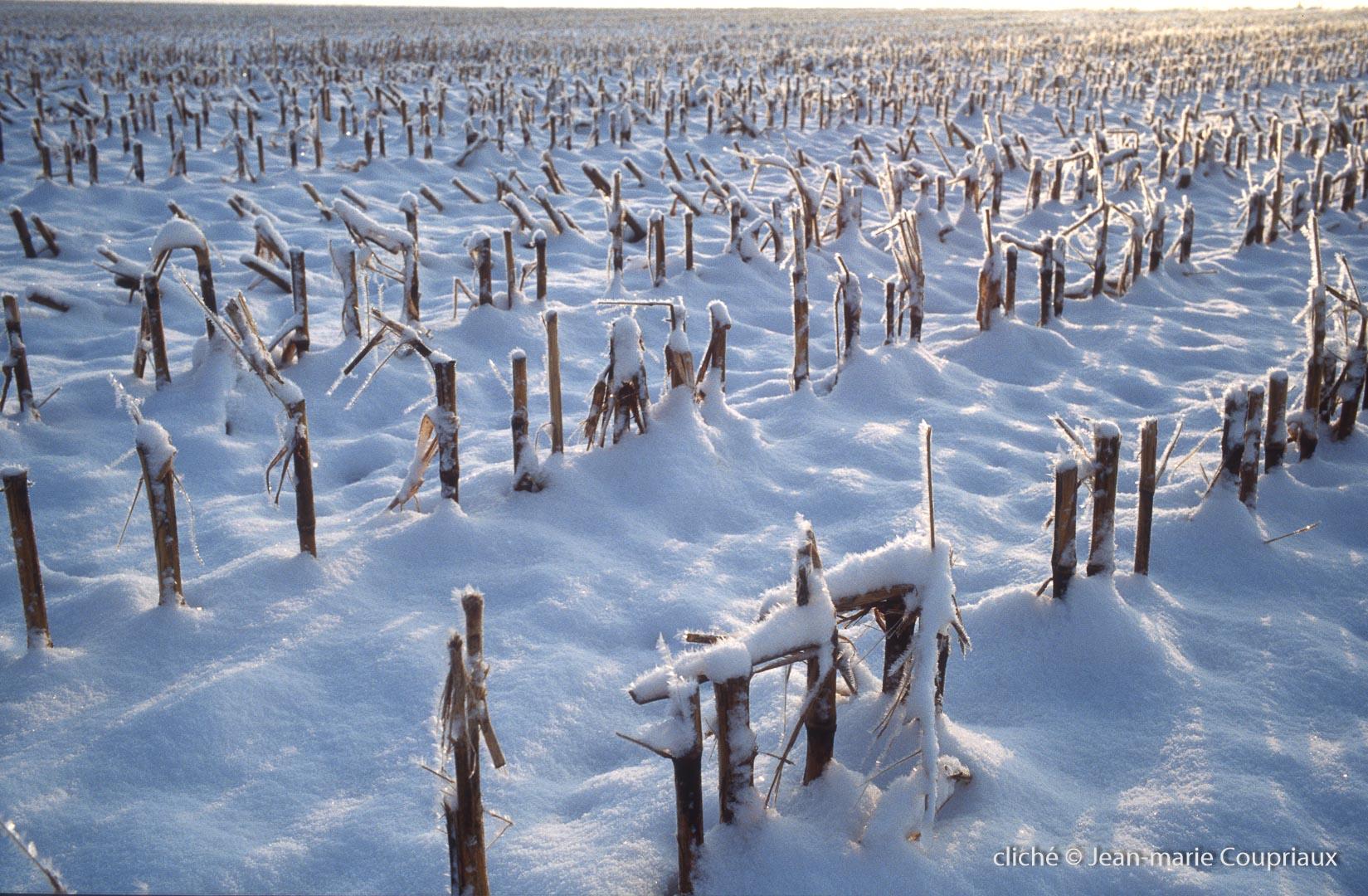 hiver-91