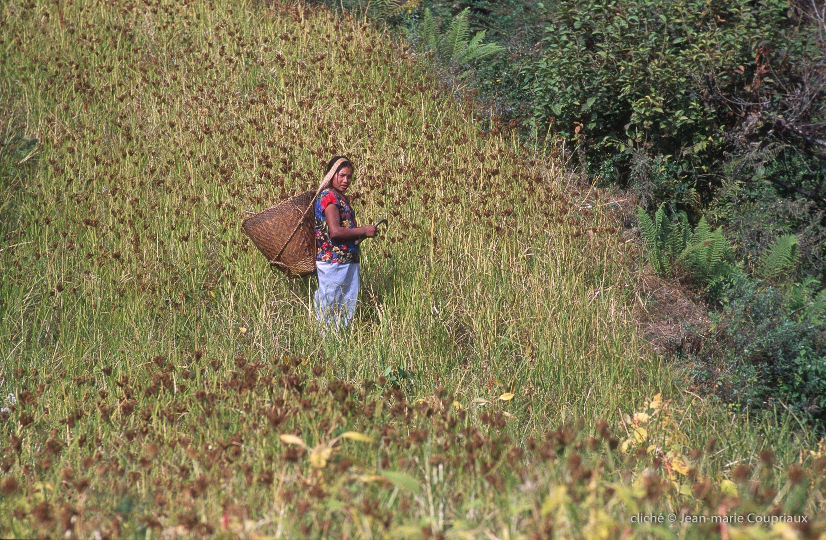 2000_Nepal-371
