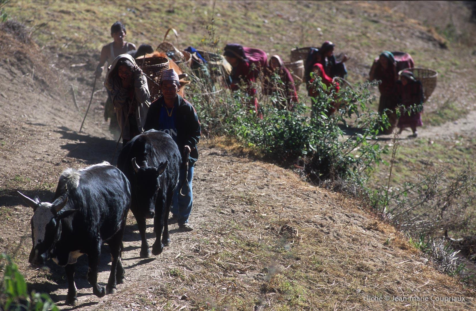 2000_Nepal-414