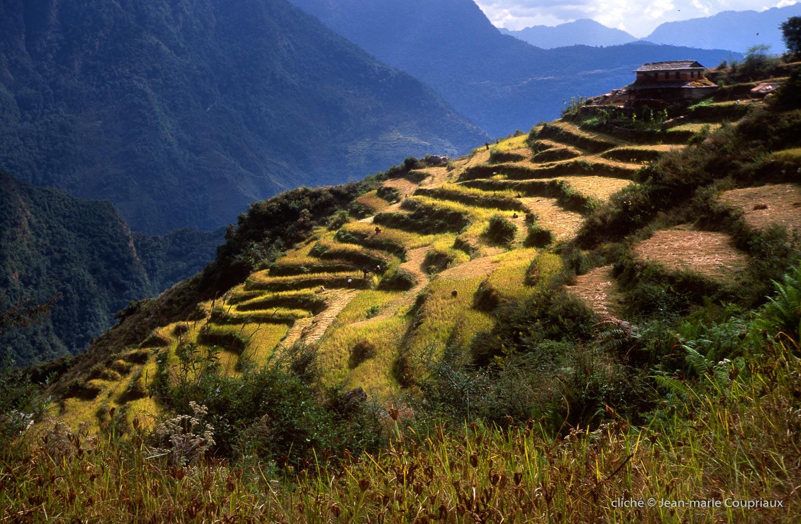 572-Népal-2000