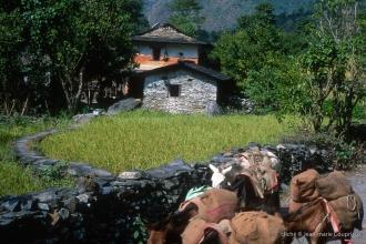 2000_Nepal-166
