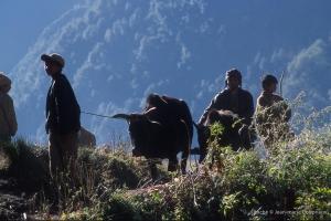 2000_Nepal-415
