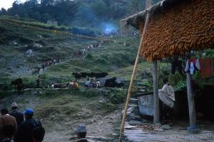 2000_Nepal-472