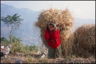2000_Nepal-363
