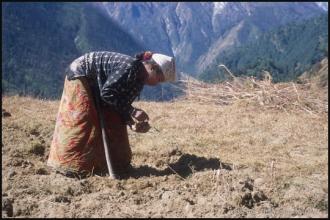 2000_Nepal-423