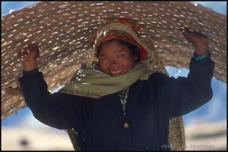 575-Népal2000-ChvxVt-2