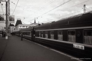 T-SIB_16
